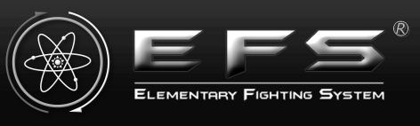 EFS Elementary Fighting System